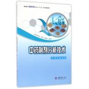 中药制剂分析技术(高职高专制药技术类专业十二五系列规划教材)