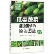 瓜类蔬菜病虫害诊治原色图鉴(第2版)/现代蔬菜病虫害防治丛书
