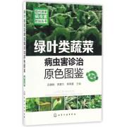 绿叶类蔬菜病虫害诊治原色图鉴(第2版)/现代蔬菜病虫害防治丛书