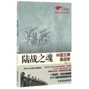 陆战之魂(中国王牌集团军)