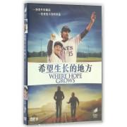 DVD-9希望生长的地方
