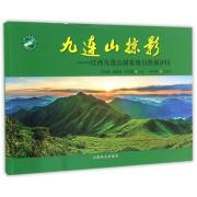 九连山掠影--江西九连山国家级自然保护区