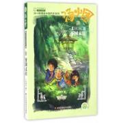 汤小团(18纵横三国卷2帝国末日)/汤小团漫游中国历史系列