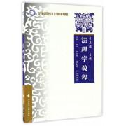 法理学教程(高等政法院校专业主干课程系列教材)