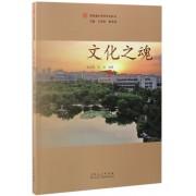文化之魂/绿色建大系列文化丛书