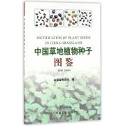 中国草地植物种子图鉴(第2册玄参科)
