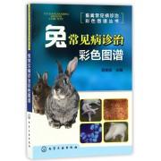 兔常见病诊治彩色图谱/畜禽常见病诊治彩色图谱丛书