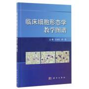 临床细胞形态学教学图谱(精)