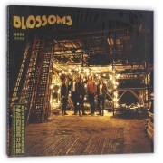 CD绽放乐队同名专辑