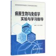 病原生物与免疫学实验与学习指导(陕西省高职高专技能型人才培养创新实训教材)