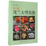 中国茂兰大型真菌(精)