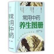 常用中药养生图册(精)