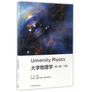 大学物理学(下第2版)