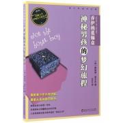 乔伊的蓝锡盒(神秘男孩的梦幻旅程)