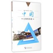 中国(大国的构建)/拉美专家看中国系列