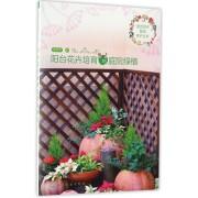 阳台花卉培育与庭院绿植/园艺花卉栽培养护丛书