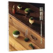 玩苔藓(六大名师教你手制苔藓球和苔藓小景)