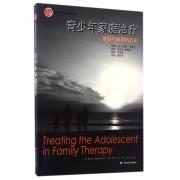 青少年家庭治疗(发展与叙事的方法)/心理治疗经典与前沿译丛