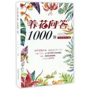 养花问答1000例