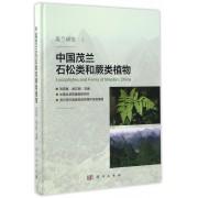 中国茂兰石松类和蕨类植物(精)