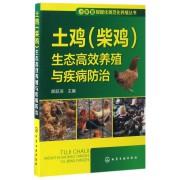 土鸡<柴鸡>生态高效养殖与疾病防治/小家畜规模化规范化养殖丛书
