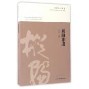 枞阳非遗/枞阳文化丛书