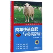 肉羊快速育肥与疾病防治(双色印刷)/经典实用技术丛书