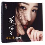 CD-DSD龙梅子我在北京你在哪