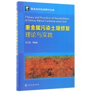 重金属污染土壤修复理论与实践/华夏英才基金学术文库