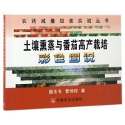 土壤熏蒸与番茄高产栽培彩色图说/农药减量控害实战丛书