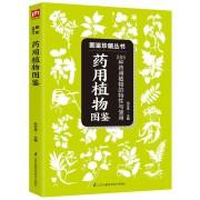 药用植物图鉴(285种药用植物的特性与使用)/图鉴珍藏丛书