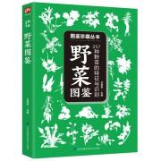 野菜图鉴(257种野菜的特征与识别)/图鉴珍藏丛书