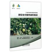 甜瓜技术服务体系集成/现代农业技术服务体系集成