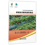 草莓技术服务体系集成/现代农业技术服务体系集成