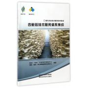 杏鲍菇技术服务体系集成/现代农业技术服务体系集成