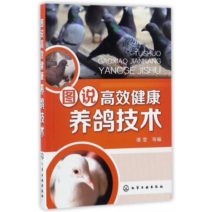 图说高效健康养鸽技术