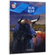 斑斓蒙古牛/自然之子黑鹤原生态系列/儿童文学童书馆