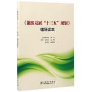 能源发展十三五规划辅导读本
