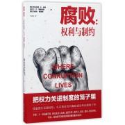 腐败--权利与制约