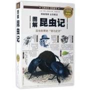 图解昆虫记(全彩图解典藏版)
