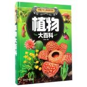 植物大百科(精)/中国少年儿童探索百科