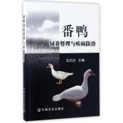 番鸭饲养管理与疾病防治
