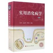 实用消化病学(第3版)(精)