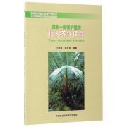 国家一级保护植物(仙湖苏铁保育)