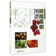 岭南果树图谱(精)