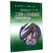 工程岩土与地基基础能力训练习题集(土木工程类高等职业技术教育十三五规划教材)