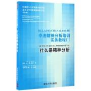 中法精神分析培训实务教程(Ⅲ什么是精神分析)