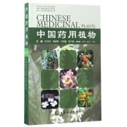 中国药用植物(20)