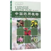 中国药用植物(16)