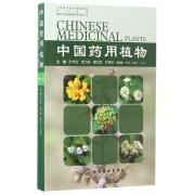 中国药用植物(18)